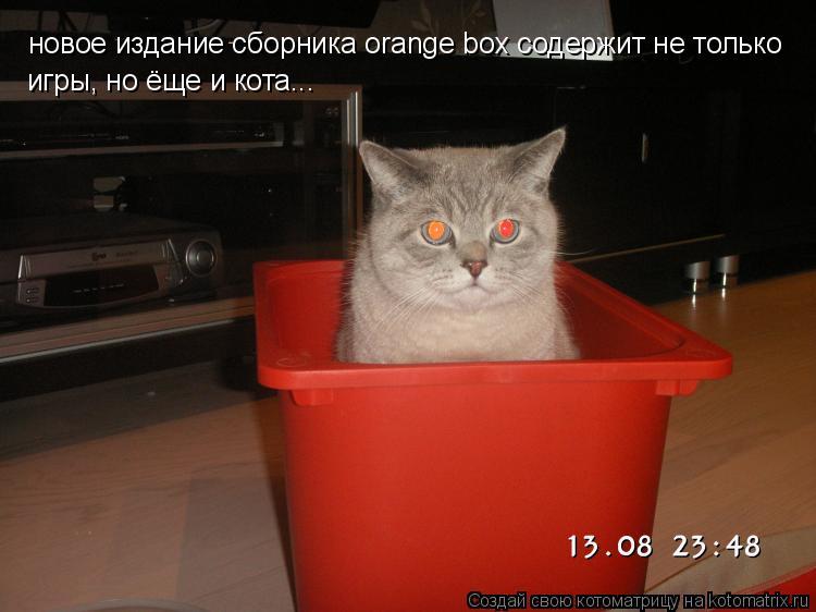 Котоматрица: новое издание сборника orange box содержит не только  игры, но ёще и кота...