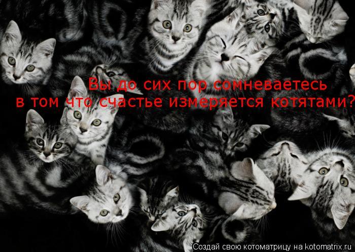 http://kotomatrix.ru/images/lolz/2009/08/14/340200.jpg