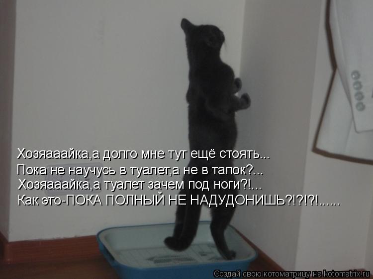 Котоматрица: Хозяааайка,а долго мне тут ещё стоять... Пока не научусь в туалет,а не в тапок?... Хозяааайка,а туалет зачем под ноги?!... Как это-ПОКА ПОЛНЫЙ НЕ Н