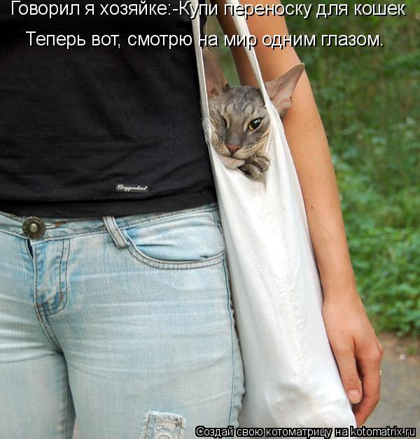 Котоматрица: Говорил я хозяйке:-Купи переноску для кошек Теперь вот, смотрю на мир одним глазом.