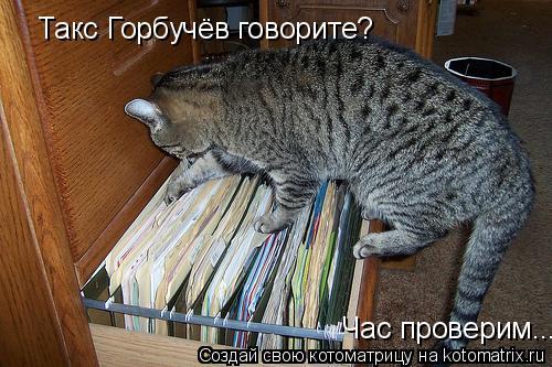 Котоматрица: Такс Горбучёв говорите? Час проверим.....