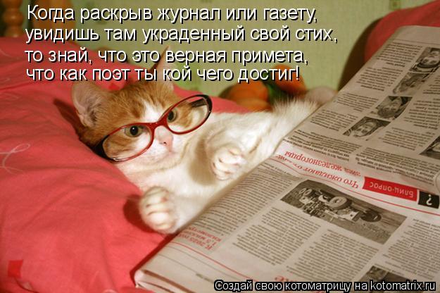 Котоматрица: Когда раскрыв журнал или газету, увидишь там украденный свой стих, то знай, что это верная примета, что как поэт ты кой чего достиг!