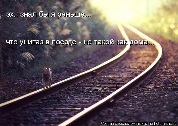 Котоматрица: эх.. знал бы я раньше... что унитаз в поезде - не такой как дома....
