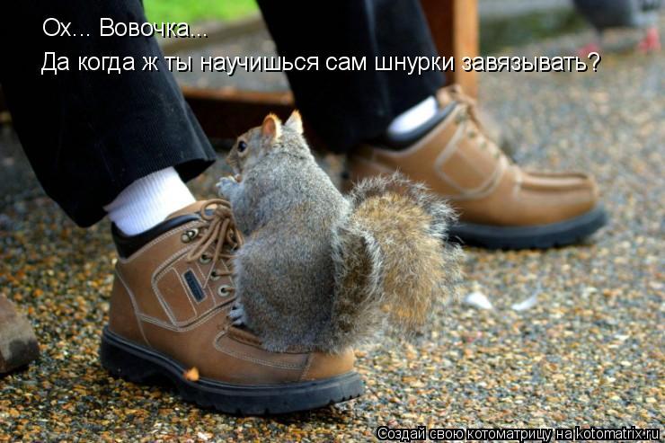 Котоматрица: Ох... Вовочка... Да когда ж ты научишься сам шнурки завязывать?