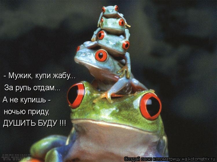 Котоматрица: А не купишь - ночью приду, ДУШИТЬ БУДУ !!! За рупь отдам... - Мужик, купи жабу...