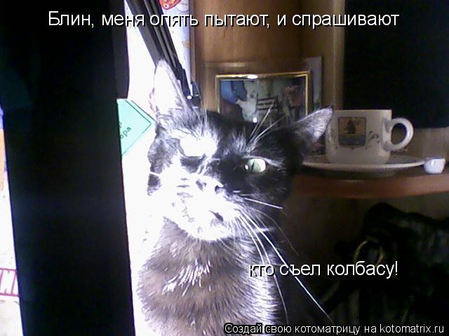 Котоматрица: Блин, меня опять пытают, и спрашивают кто съел колбасу!