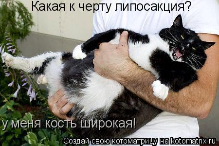 Котоматрица: Какая к черту липосакция? у меня кость широкая!