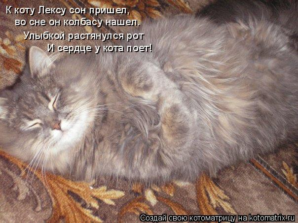 Котоматрица: К коту Лексу сон пришел, К коту Лексу сон пришел, во сне он колбасу нашел. Улыбкой растянулся рот И сердце у кота поет!