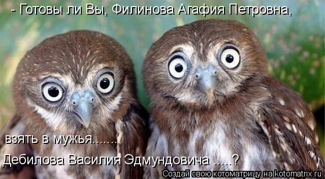 Котоматрица: - Готовы ли Вы, Филинова Агафия Петровна,  взять в мужья....... Дебилова Василия Эдмундовича .....?