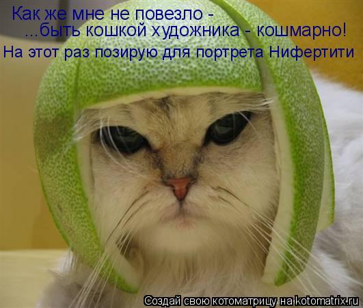 Котоматрица: Как же мне не повезло -  ...быть кошкой художника - кошмарно! На этот раз позирую для портрета Нифертити