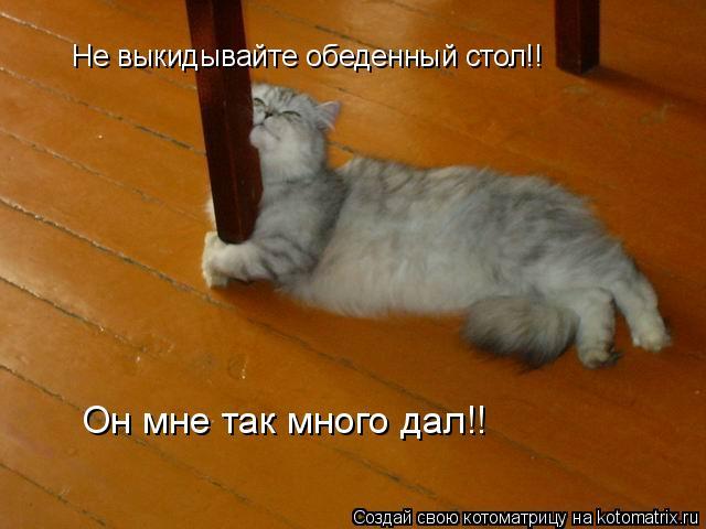 Котоматрица: Не выкидывайте обеденный стол!! Он мне так много дал!!