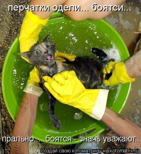 Котоматрица: перчатки одели... боятси... прально.... боятся - значь уважают...