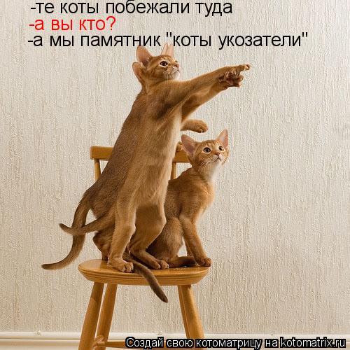 """Котоматрица: -те коты побежали туда -а вы кто? -а мы памятник """"коты укозатели"""""""