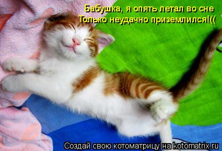 Котоматрица: Бабушка, я опять летал во сне Только неудачно приземлился!((