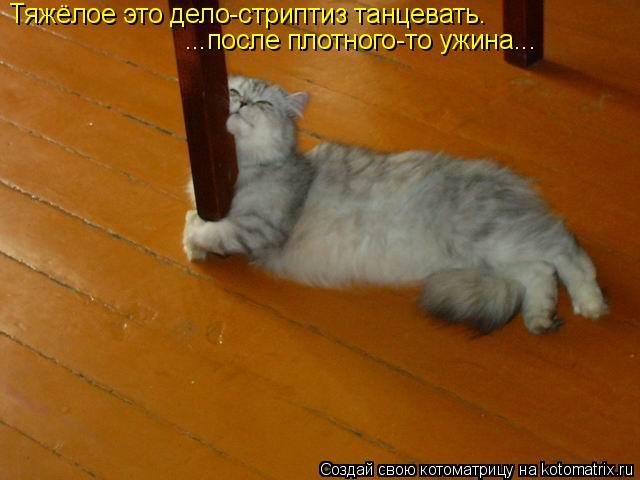 Котоматрица: Тяжёлое это дело-стриптиз танцевать. ...после плотного-то ужина...