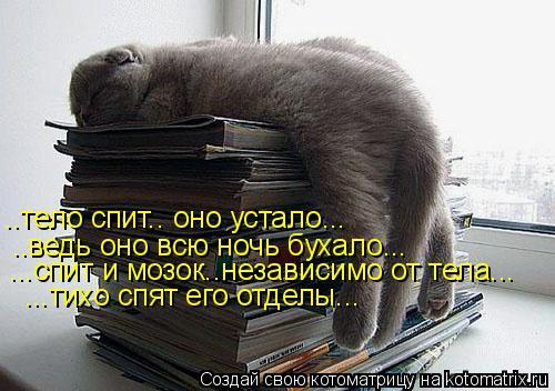 Котоматрица: ..тело спит.. оно устало... ..ведь оно всю ночь бухало... ...спит и мозок..независимо от тела... ...тихо спят его отделы...