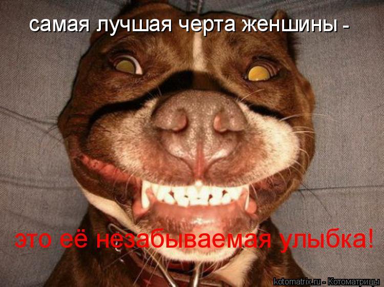 Котоматрица: самая лучшая черта женшины - это её незабываемая улыбка!