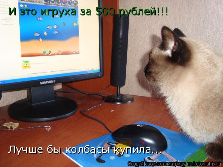 Котоматрица: И это игруха за 500 рублей!!! Лучше бы колбасы купила...