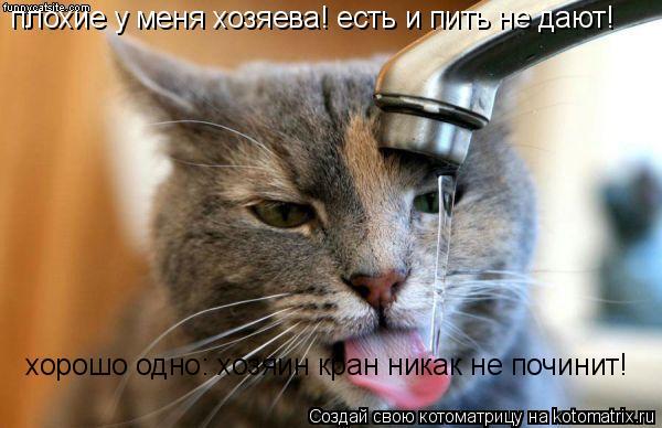 Котоматрица: плохие у меня хозяева! есть и пить не дают! хорошо одно: хозяин кран никак не починит!