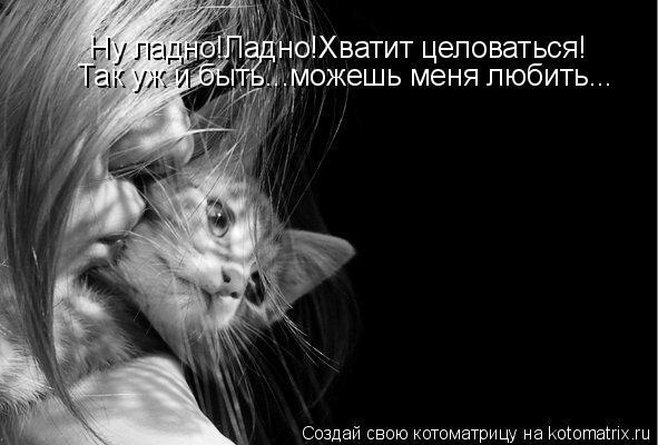 Котоматрица: Ну ладно!Ладно!Хватит целоваться! Так уж и быть...можешь меня любить...