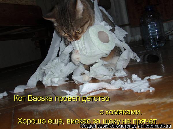 Котоматрица: с хомяками. Кот Васька провел детство Хорошо еще, вискас за щеку не прячет...
