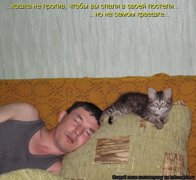 Котоматрица: ...кошка не против, чтобы вы спали в своей постели... ...но на самом краешке...