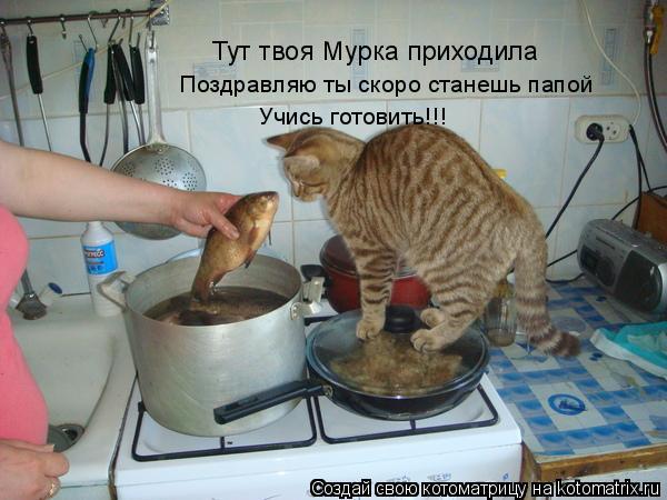 Котоматрица: Тут твоя Мурка приходила Поздравляю ты скоро станешь папой Учись готовить!!!