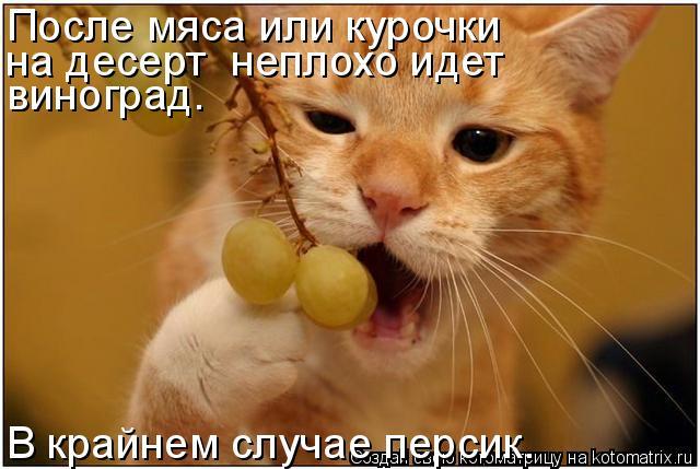 Котоматрица: После мяса или курочки на десерт  неплохо идет виноград. В крайнем случае персик.