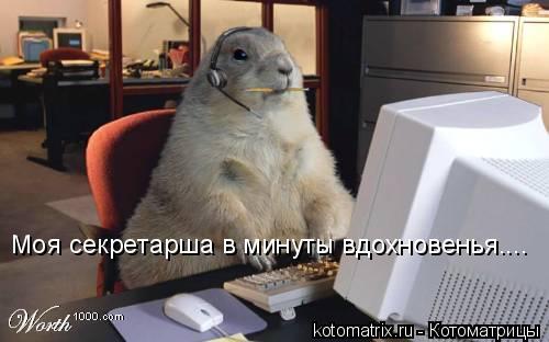 Котоматрица: Моя секретарша в минуты вдохновенья....