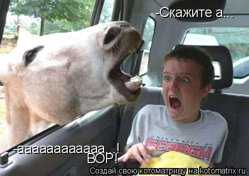Котоматрица: -Скажите а... -аааааааааааа...! ВОР!