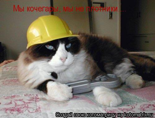 Котоматрица: Мы кочегары, мы не плотники.... Мы кочегары, мы не плотники....
