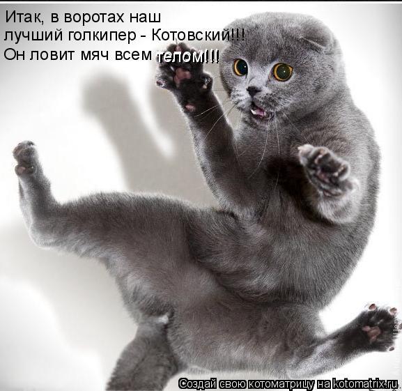 Котоматрица: Итак, в воротах наш  лучший голкипер - Котовский!!! Он ловит мяч всем       телом!!!       телом!!!