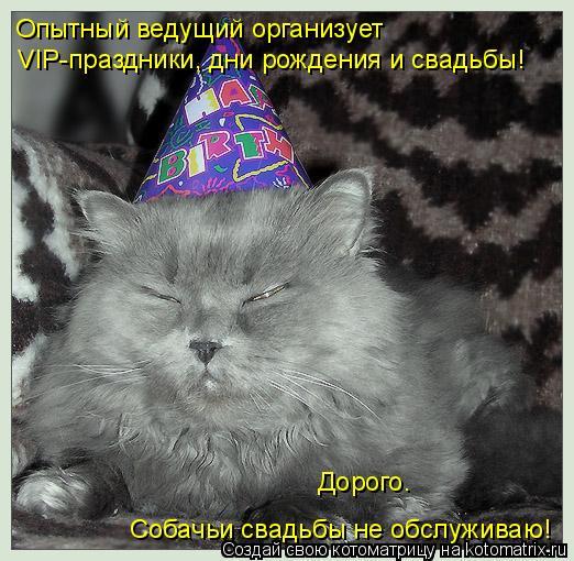 Котоматрица: Опытный ведущий организует  VIP-праздники, дни рождения и свадьбы!  Дорого.  Собачьи свадьбы не обслуживаю!