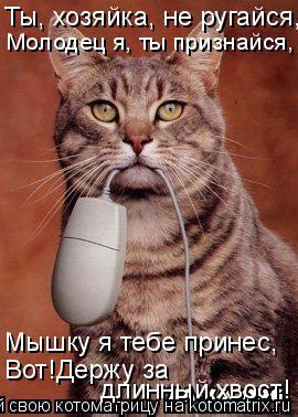 Котоматрица: Ты, хозяйка, не ругайся, Молодец я, ты признайся, Мышку я тебе принес, Вот!Держу за  длинный хвост!