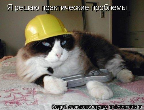 Котоматрица: Я решаю практические проблемы