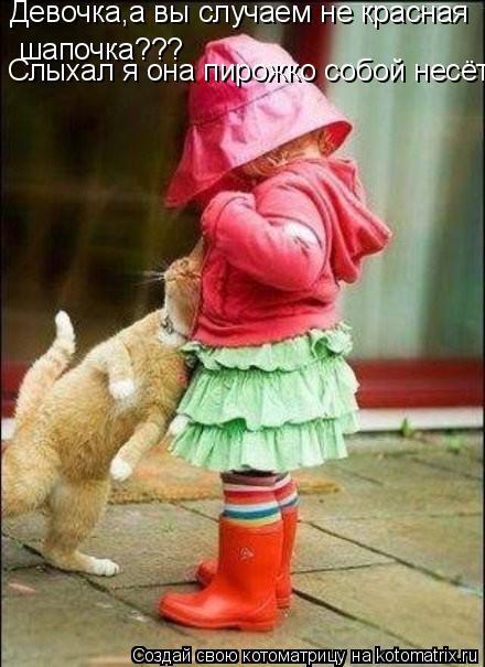 Котоматрица: Девочка,а вы случаем не красная шапочка??? Слыхал я она пирожко собой несёт
