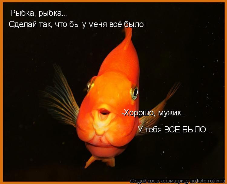 Котоматрица: Рыбка, рыбка... Сделай так, что бы у меня всё было! -Хорошо, мужик... У тебя ВСЕ БЫЛО...
