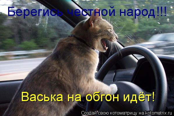Котоматрица: Берегись честной народ!!! Васька на обгон идёт!