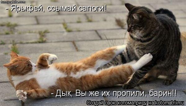 Котоматрица: - Ярыфей, ссымай сапоги! - Дык, Вы же их пропили, барин!!