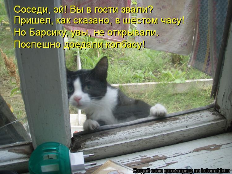Котоматрица: Соседи, эй! Вы в гости звали? Пришел, как сказано, в шестом часу! Но Барсику, увы, не открывали. Поспешно доедали колбасу!