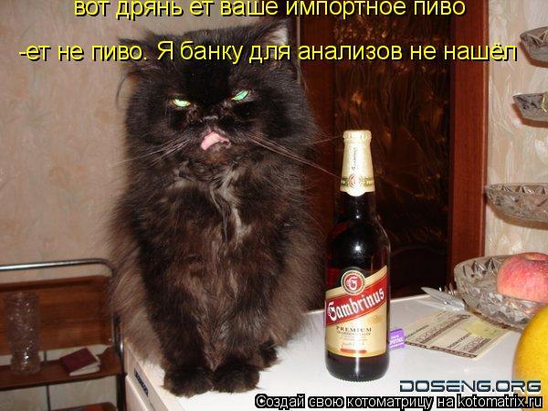 Котоматрица: вот дрянь ет ваше импортное пиво -ет не пиво. Я банку для анализов не нашёл