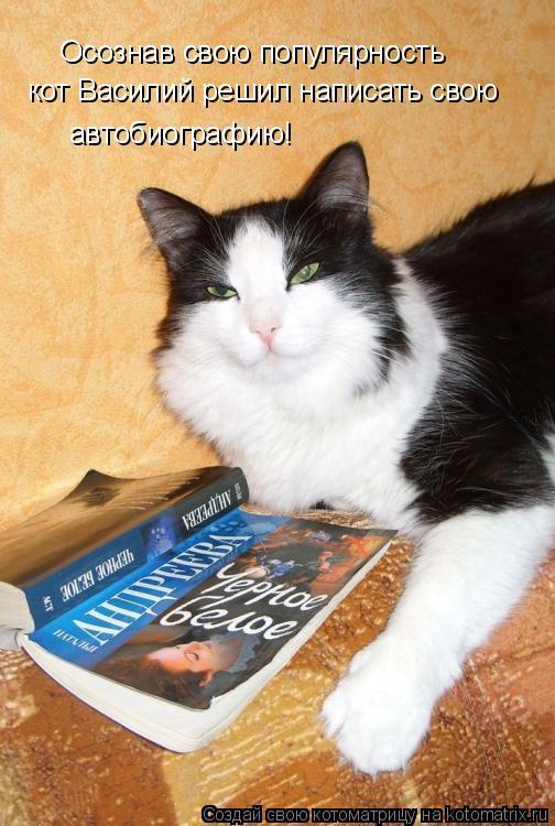 Котоматрица: Осознав свою популярность кот Василий решил написать свою  автобиографию!