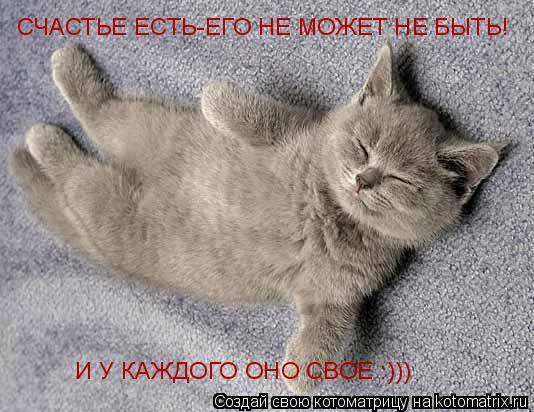 Котоматрица: СЧАСТЬЕ ЕСТЬ-ЕГО НЕ МОЖЕТ НЕ БЫТЬ! И У КАЖДОГО ОНО СВОЕ :)))