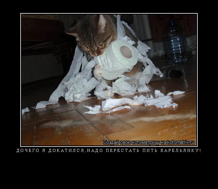 Котоматрица: Дочего я докатился,надо перестать пить варельянку!