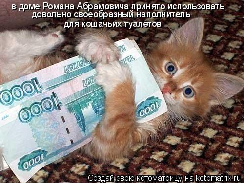 Котоматрица: в доме Романа Абрамовича принято использовать  довольно своеобразный наполнитель  для кошачьих туалетов