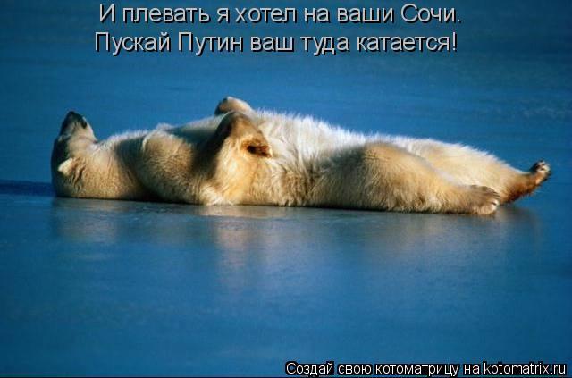 Котоматрица: И плевать я хотел на ваши Сочи. Пускай Путин ваш туда катается!