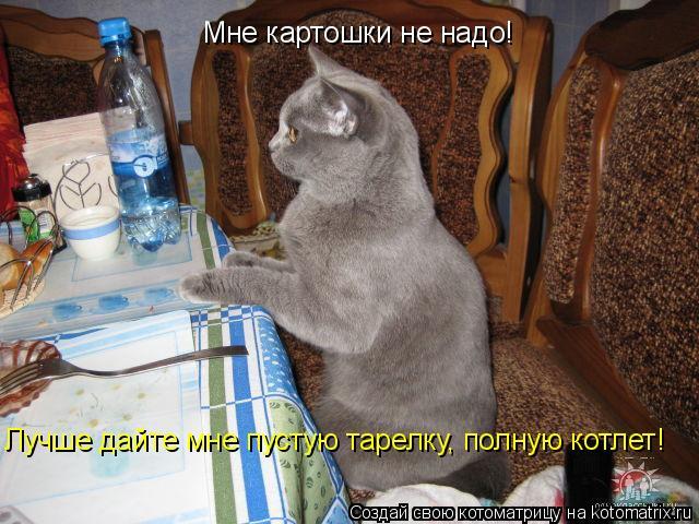 Котоматрица: Мне картошки не надо!  Лучше дайте мне пустую тарелку, полную котлет!