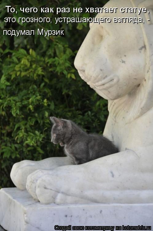 Котоматрица: То, чего как раз не хватает статуе, это грозного, устрашающего взгляда, - подумал Мурзик