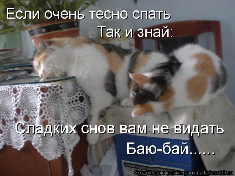 Котоматрица: Если очень тесно спать Так и знай: Сладких снов вам не видать Баю-бай......