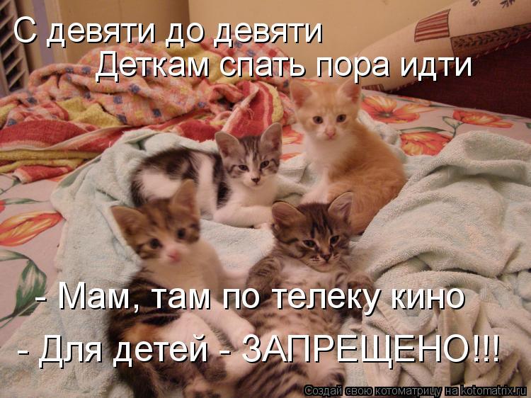 Котоматрица: С девяти до девяти Деткам спать пора идти - Мам, там по телеку кино - Для детей - ЗАПРЕЩЕНО!!!